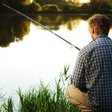 Fischen am Wörthersee